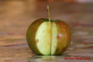 mela con danni da punture di Halyomorpha halys